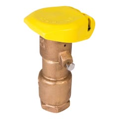 44RC - 1 in. Quick Coupling Valve with 2-Piece Body